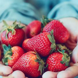 Delicious summer strawberries.
